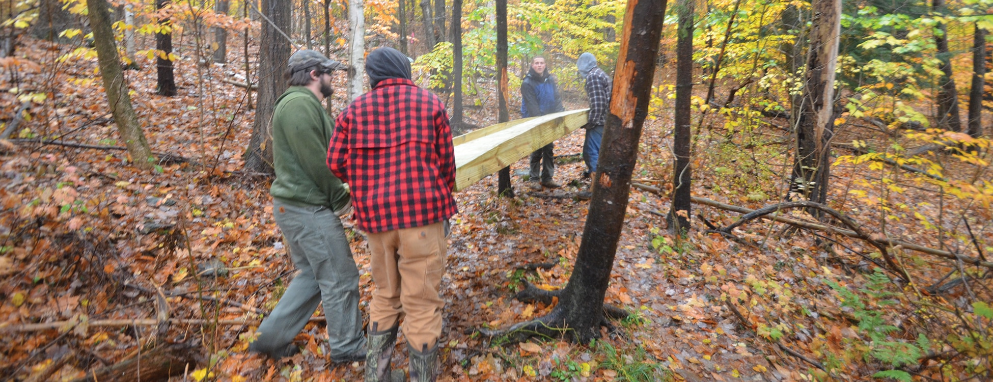 Hubbard Park, trail bridge, students working, teamwork, building