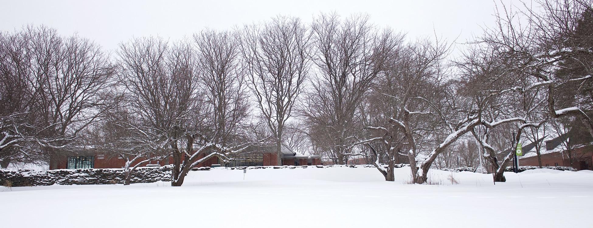 winter, snow, Randolph Center campus