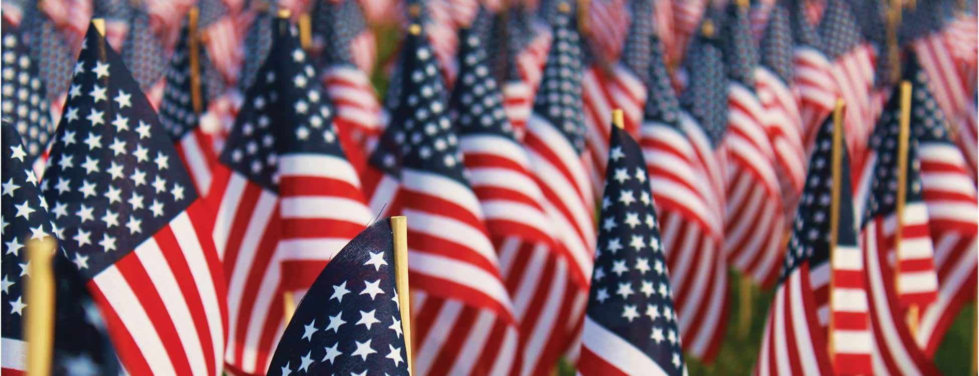 veterans day, american flag, united states