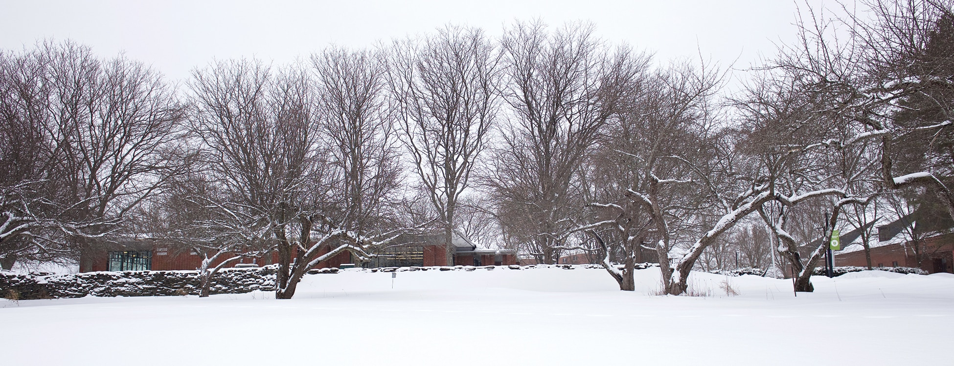 Winter, Randolph Center campus, snow, bare trees