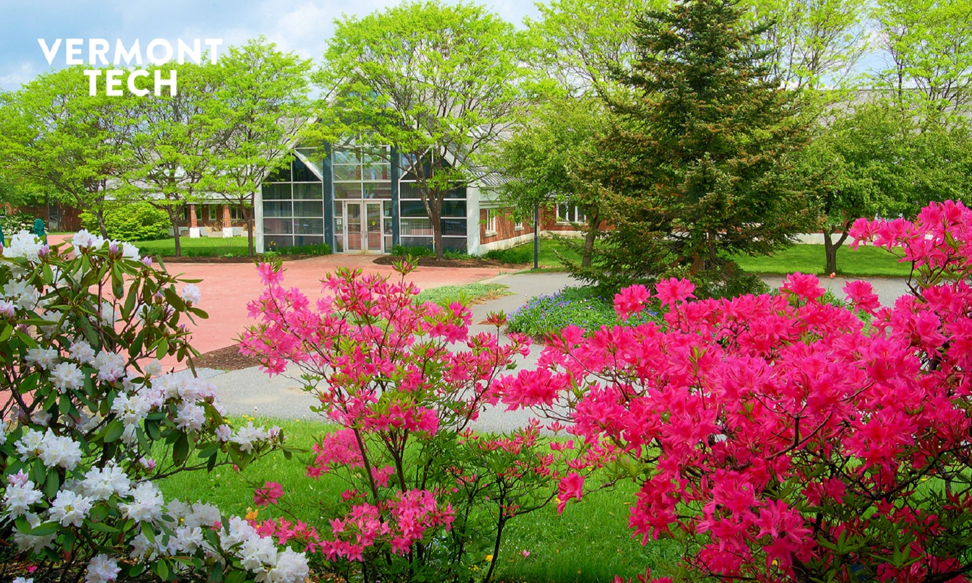 spring, flowers, Randolph Center campus