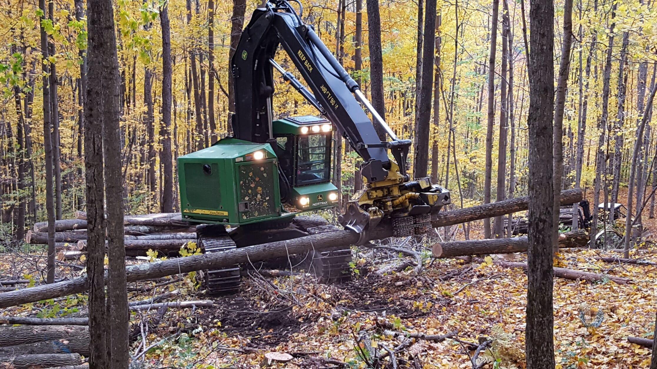 Logging machine in woods, fall, machine